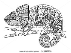 动物/野生生物 库存照片 : Shutterstock 库存摄影