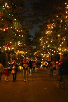 Christmas Tree Lane -- an annual event in Altadena