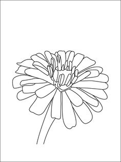 Marigolds outline | Tattoos | Pinterest | Marigold ...