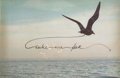 beautiful, ocean, bird, Dream, vintage