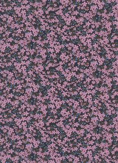 100% cotton Liberty Tana Lawn.    Approximately 137cm in width.     The Strawberry Thief, Liberty Art Fabrics, Star Anise, Pink Patterns, Textile Design, Lawn, Art Gallery, Arts And Crafts, Stars
