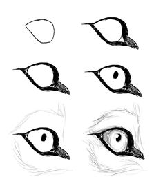 Good Absolutely Free wolf drawing tutorial Suggestions : Learn how to draw with these tutorials, which teach you to draw animals, people, flowers, landscapes and more. Cartoon Drawings, Cool Drawings, Drawing Sketches, Cartoon Eyes, Cartoon Dog, Cute Wolf Drawings, Cartoon Birds, Sketch Art, Sketching