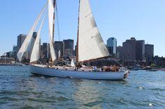 Boston Sightseeing Sail- Day Sail of Boston Harbor w/ New England Aquarium and Charleston Navy Yard