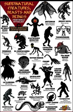 Magical Creatures, Fantasy Creatures, Myths & Monsters, Sea Monsters, Famous Monsters, World Mythology, Legends And Myths, Mothman, Mythological Creatures