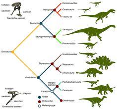 Hvilke oplysninger kan radiocarbon dating fortælle paleontologer colombian dating site