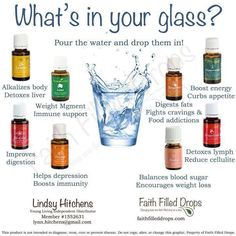 What's in your glass?