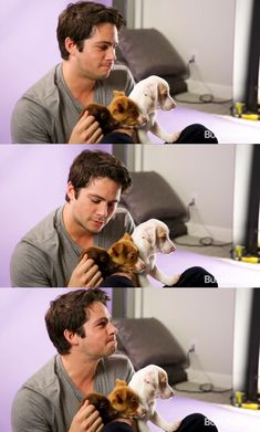 Dylan O'Brien with puppies is a cuteness overload - Dylan O'Brien with puppie. - Dylan O'Brien with puppies is a cuteness overload – Dylan O'Brien with puppies is a cuteness - Teen Wolf Dylan, Teen Wolf Stiles, Teen Wolf Cast, Dylan O'brien Hot, Dylan O'brien Maze Runner, Dylan O Brien Cute, Collage Des Photos, Dylan O Brain, Jake T Austin