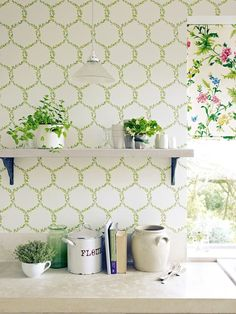Spring Trellis by Sanderson : Wallpaper Direct Decor, Kitchen Wallpaper, Beautiful Wall, Green Kitchen Wallpaper, Wallpaper, Trellis, Trellis Wallpaper, Dining Room Wallpaper, Wall Coverings
