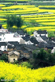 Wuyuan County , China