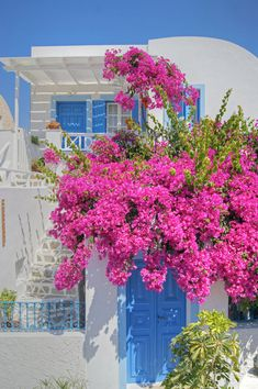 'House+Of+Bougainvillea'+by+David+Birchall+on+artflakes.com+as+poster+or+art+print+$17.33