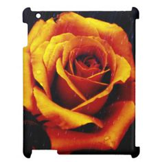 Drama Of The Orange Rose iPad Case