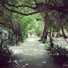 Helengeli Island, Maldives Maldives, Suitcase, Sidewalk, Island, World, Heart, Places, Travel, The Maldives