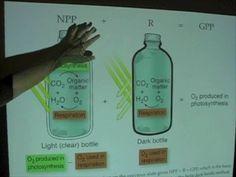 Ocean Productivity - Light-Dark Bottle Method