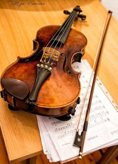 violin by Myra K. Koskeridou