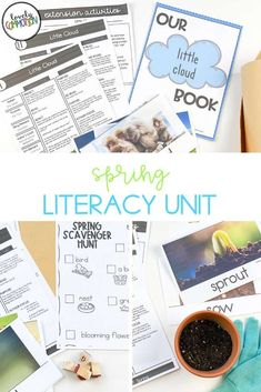 Literacy activities for preschoolers based around four popular read-alouds. This Literacy unit is based on a Spring theme. Literacy Activities, Literacy Centers, Comprehension Strategies, Reading Comprehension, Third Grade Reading, Authors Purpose, Common Core Reading, Vocabulary Cards, Spring Theme