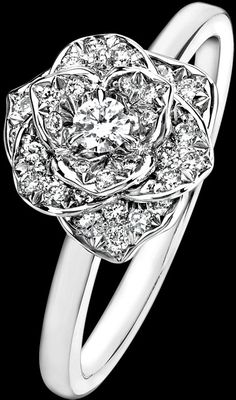 piaget rose ring - right hand
