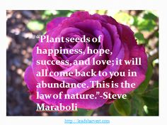 """""""Plant seeds of happiness, hope, success, and love; it will all come back to you in abundance. This is the law of nature.""""-Steve Maraboli"""