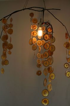 Dehydrated orange slices hanging from a branch. You could poke some cloves into the edges of the sliced oranges to add to the scent. The light behind the slices is beautiful, but I might prefer hanging them next to a sunny window. Christmas Crafts, Christmas Decorations, Xmas, Deco Nature, Natural Christmas, Nature Crafts, My New Room, Wind Chimes, Room Inspiration