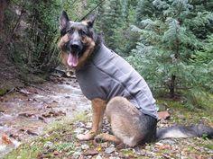 Ruff Wear Climate Changer Coat Fits three legged Tripod Dogs best.