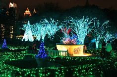 Atlanta Botanical Gardens Garden Lights Holiday Nights. I hope they'll do that this year as we'll be there in December!