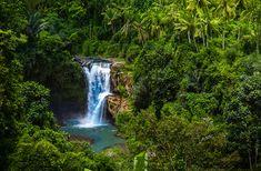 Secret jungle Tegenungan Waterfall, Bali, Indonesia
