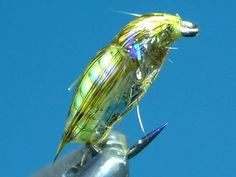 Fly Tying tutorial shared by Bill Johnson - Fly dreamers. Find the best fly-tying videos, step by step instructions, flies and patterns in Fly dreamers, the Fly fishing network.