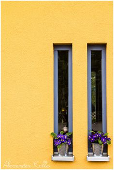 window in Erlangen, Bavaria, Germany Stairwell Wall, Window Grill Design, Through The Window, Modern House Plans, Window Boxes, Mid Century House, Door Knockers, Mellow Yellow, Beautiful Buildings