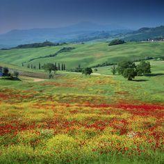 San Quirico - Tuscany, Italy