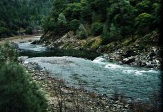 Judge won't stop emergency water releases helping Klamath Basin salmon