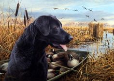 Artist James Killen Unframed Dog Print The Empty Blind-Black Lab | WildlifePrints.com