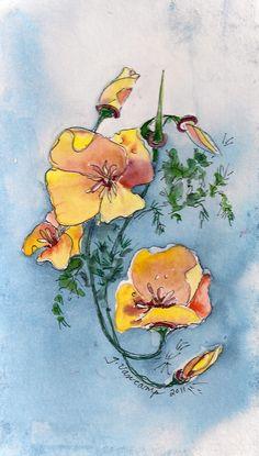"""""""California Poppies Design"""" - Watercolor - Gail Van Camp"""