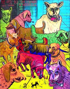 Dogs for Sale in Międzylesie