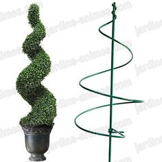 1 million+ Stunning Free Images to Use Anywhere Topiary Garden, Boxwood Topiary, Topiary Trees, Garden Shrubs, Garden Art, Garden Design, Christmas Candle Decorations, Front Yard Design, Free To Use Images