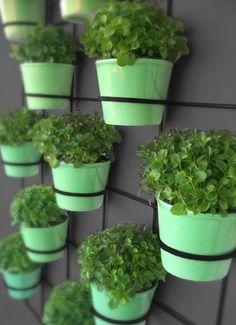 Wall Planters - insitu wall planters
