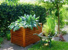 Gartenratgeber: Garten-stiefmütterchen Ratgeber Richtig Pflanzen ... Garten Stiefmuetterchen Ratgeber Pflanzen