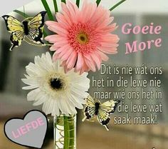 Good Morning Greetings, Good Morning Wishes, Good Morning Quotes, Goeie Nag, Goeie More, Afrikaans Quotes, Special Quotes, Plants, Phone