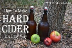 """Making Hard Apple Cider Homesteading  - The Homestead Survival .Com     """"Please Share This Pin"""""""