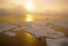 9 Countries and the EU Are Protecting the Arctic Ocean Before the Ice Melts