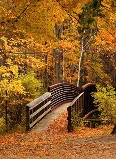 """Autumn Bridge in Berkshires"" ~ Lenox, Massachusetts: Photo by Yiping Szu"