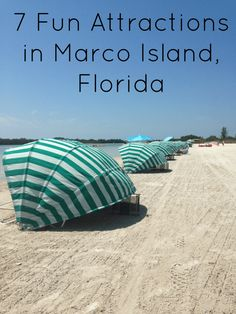 Planning a trip to Marco Island, don't miss these fun attractions in Marco Island and the surrounding areas.