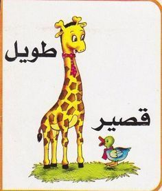 omniawagdy: بطاقات تعليمية للصفات المتضادة فى اللغة العربية لتلاميذ الصف الأول الابتدائى الترم الأول