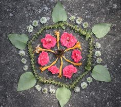 Made from discarded garden clippings and some clover blossoms. Flower Mandala, Mandala Art, Ephemeral Art, Sacred Geometry, Geometry Art, Ecole Art, High School Art, Environmental Art, Science Art