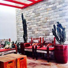Terraço por Pavesi Arquitetura #pavesiarquitetura! #pavesiarquitetura #landscape #arquitetura #decor #decoração #decora #terraço #jardim #interiores #interiordesign