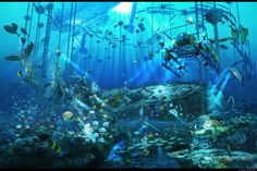 animal arsenixc boat bubbles chain fish original scenic underwater water wallpaper background