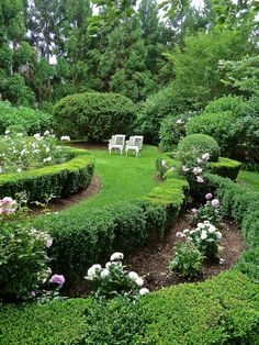 The right varieties to compliment and accent the home's style and your vision, will contribute to the success of your landscape and ultimate rose garden design. Hamptons House, The Hamptons, Formal Gardens, Outdoor Gardens, White Gardens, Garden Care, Parcs, Plantation, Garden Spaces