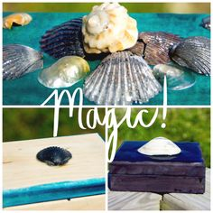 Magically Transformed Treasure Boxes From The Sea | ?utm Source=ColorPerfectSpotlight&utm Medium=button&utm Campaign=Home | Rit Fabric Dye Clothing Dyeing