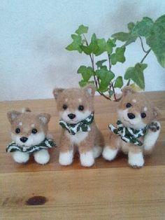 小さな小さな豆柴3兄弟♪