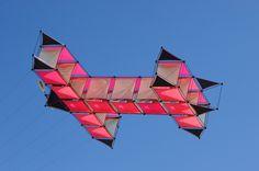 Drachen#2 von Dirk Hegerkamp