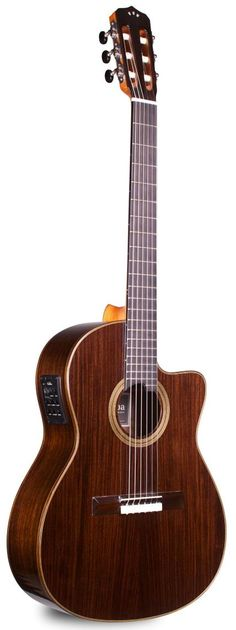 Cordoba 12 Rose Acoustic-Electric Nylon String Guitar. Street Price: $779.99. For a detailed guide to nylon string guitars see https://www.gearank.com/guides/nylon-string-guitar
