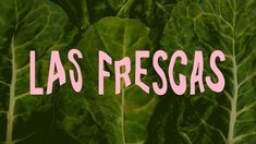 Provincia - Estudio Creativo Dynamic Logo, Food Branding, City Restaurants, Salad Bar, Package Design, Adobe, Plant Leaves, Asian, Instagram